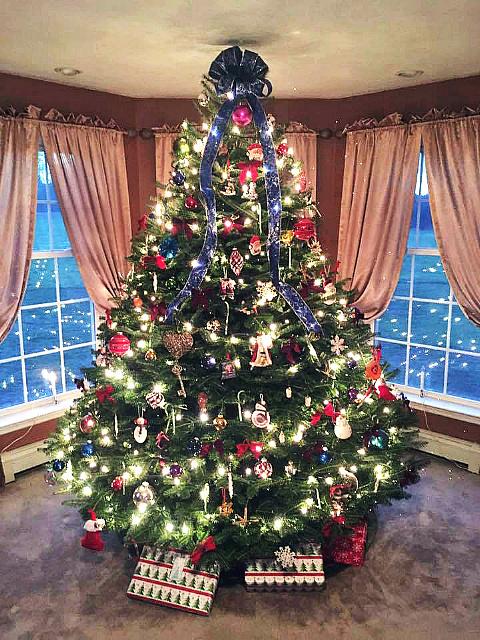 Mcta Member Photos Massachusetts Christmas Tree Association