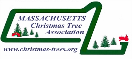 Massachusetts Christmas Tree Association